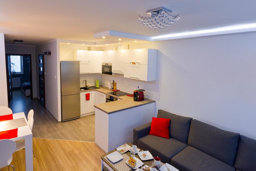 кухня-гостиная со встроенными бытовыми приборами